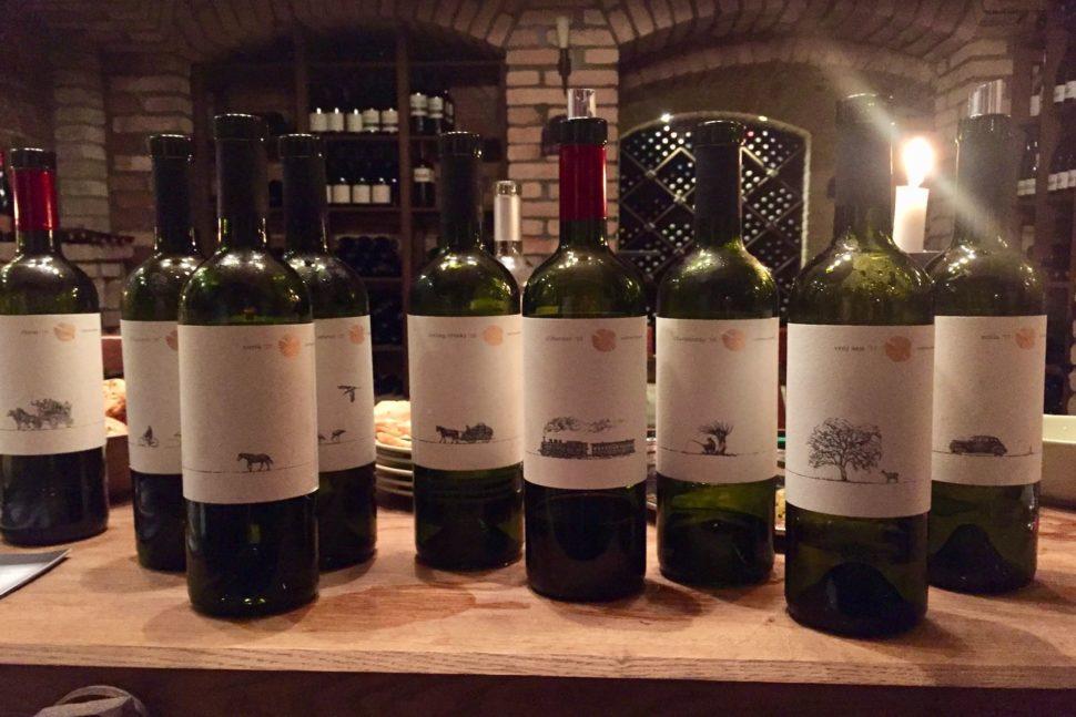 Ochutnávka vín Chateau Ruban